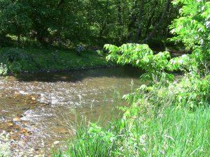 Middle Creek runs alongside Doubs Park