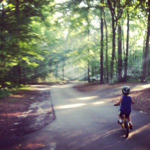 The Blog Days of Summer for the Mom Blogger