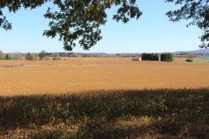 Beautiful farmland in Frederick County
