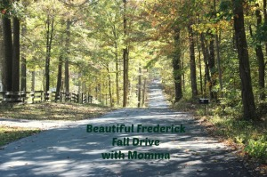 Beautiful Frederick Fall Drive with Momma