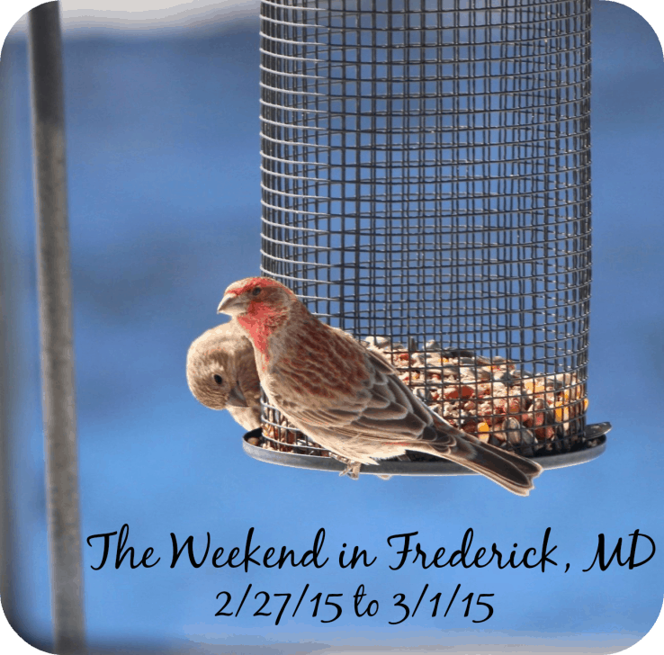 The Weekend in Frederick, MD 2/27/15 to 3/1/15