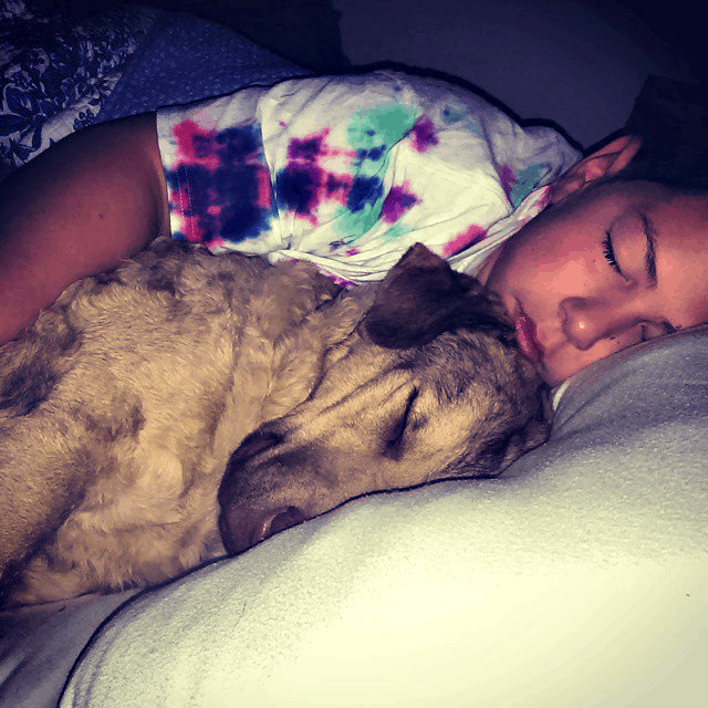 Our son in bed with our Chesapeake Bay Retriever, Stella