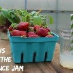 10-Reasons-To-Go-To-The-2015-Lettuce-Jam