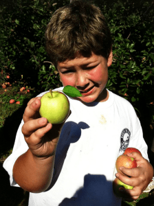 sean with apple