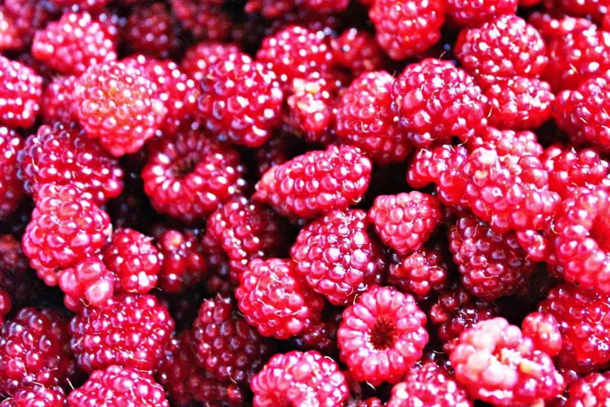 Raspberry Crisp - 7 Weight Watchers PPV
