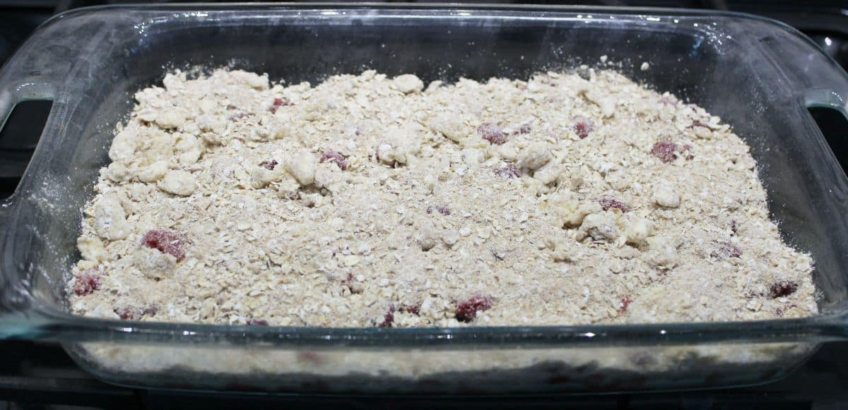 Raspberry Crisp - 7 Weight Watchers PPV