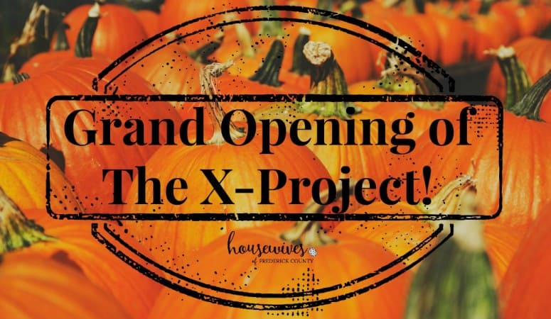 Grand Opening of The X-Project!