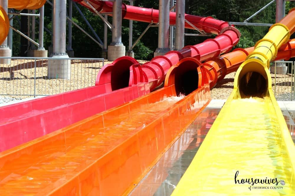 Tons of water slides at Soak City