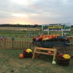 Summers Farm Giveaway!