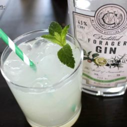 Gin Cocktail Recipe: The Thirsty Forager