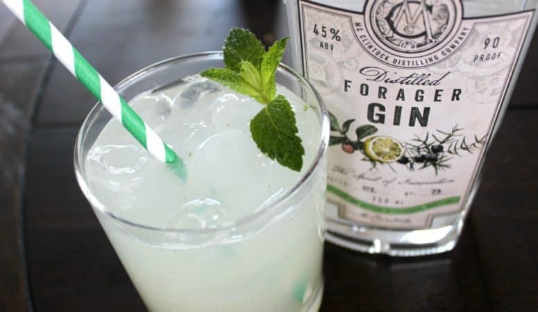 Thirsty Forager Gin Cocktail