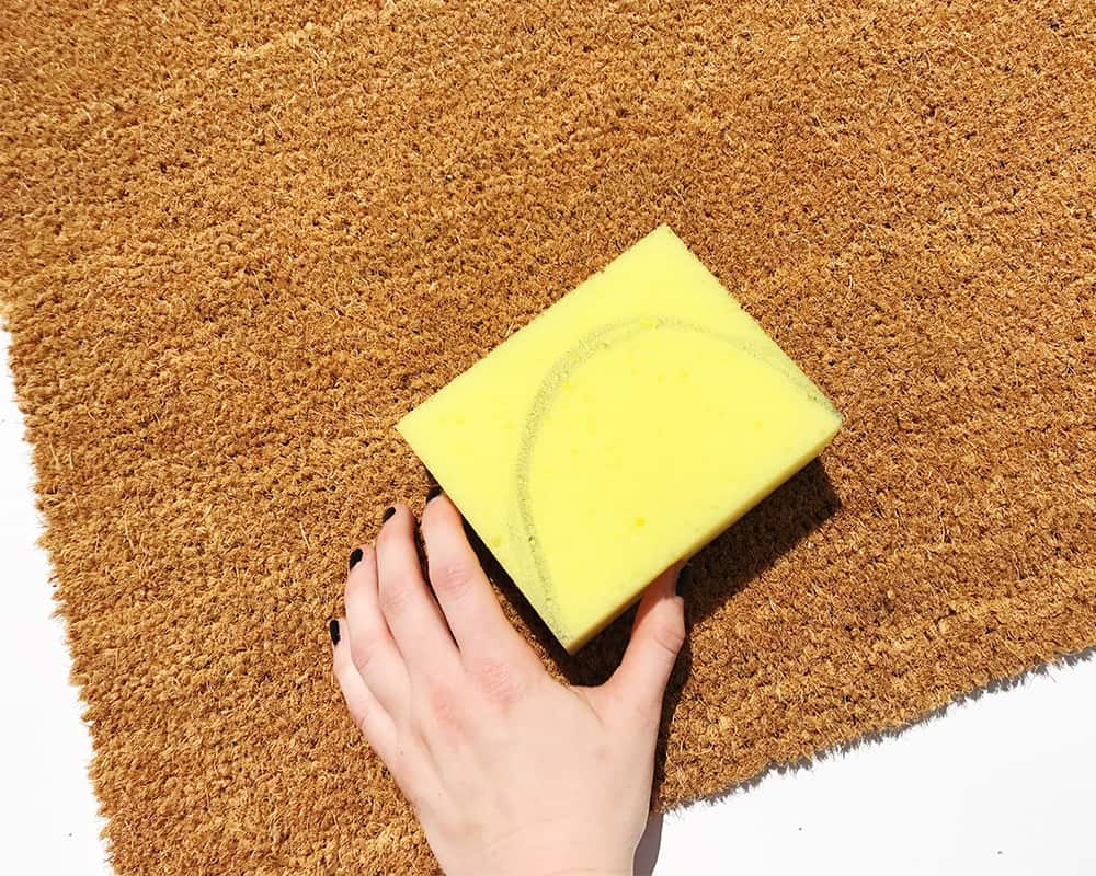 Cut your sponge to use to apply paint
