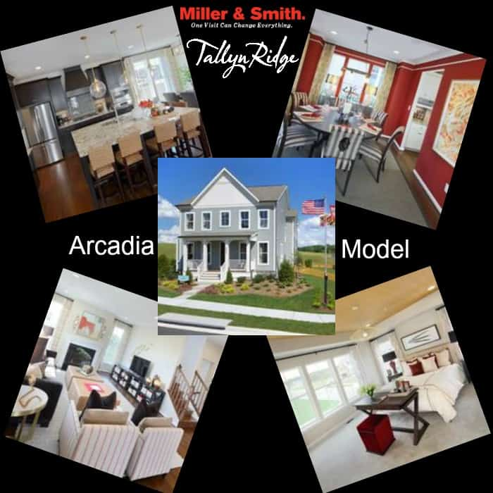 Arcadia Single Family Model Home at Tallyn Ridge