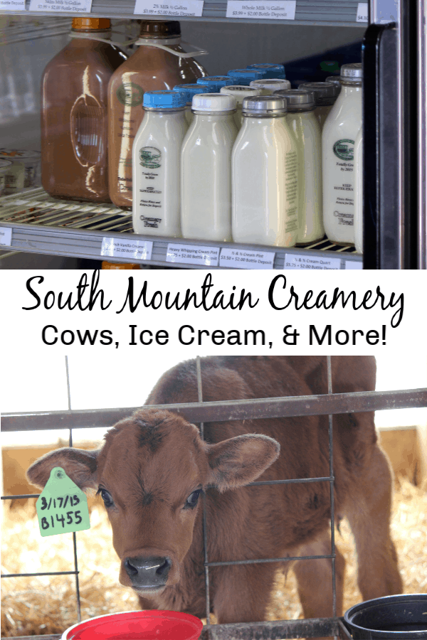 South Mountain Creamery - Cows, Ice Cream & More!