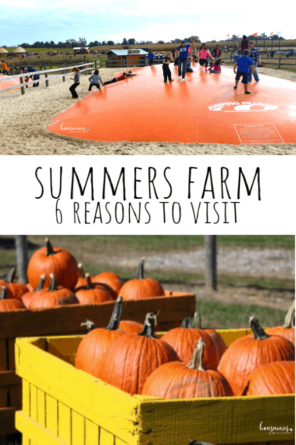 Summers Farm: The Most Important Reasons You Should Visit