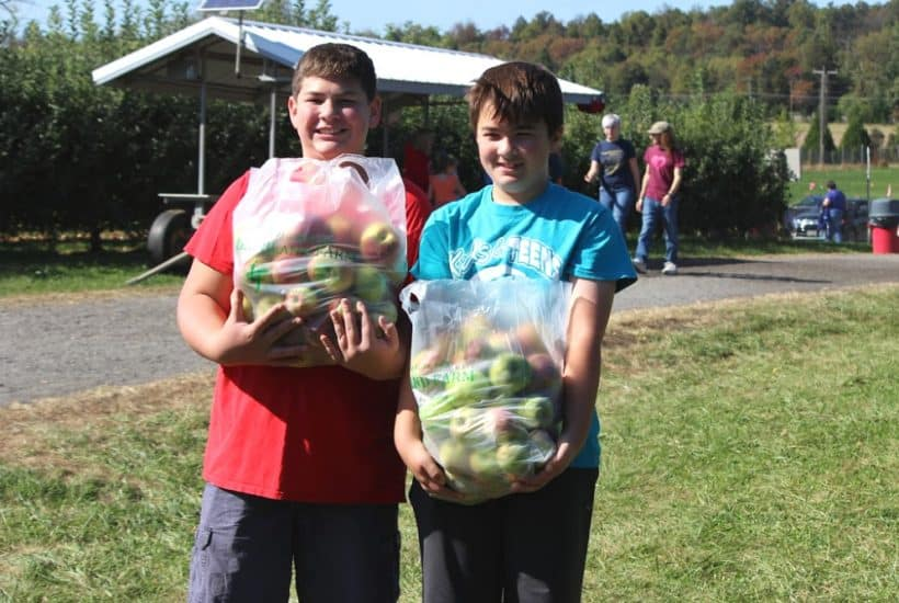 9 Popular Apple Picking Farms in the Frederick, Md Area