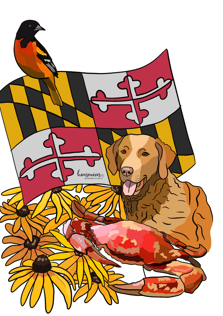 Maryland Themed Kids Activity Book: Educational & Fun!