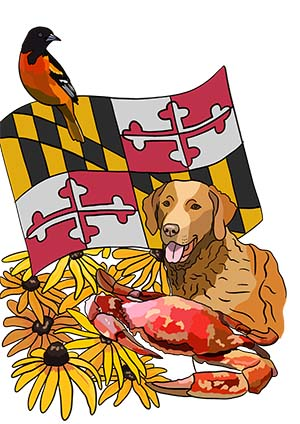 Maryland Kids Activity Book Cover