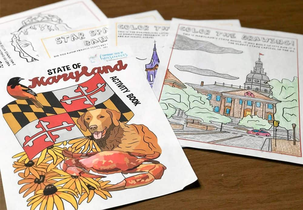 Maryland Kids Activity Book: Educational & Fun!