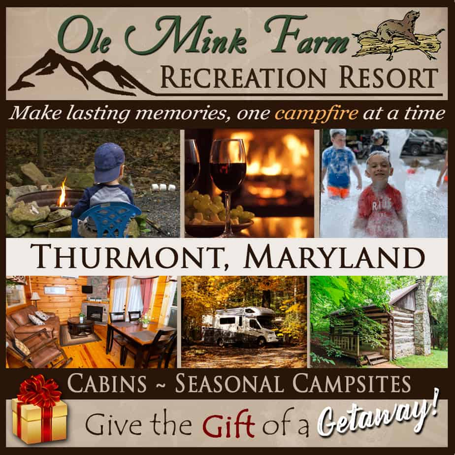 2020 Holiday Gift Guide for Frederick, Md: Something for Everyone On Your List!