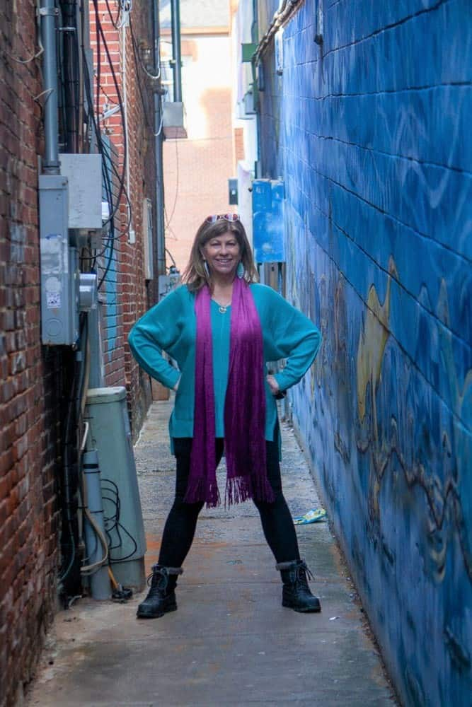 Alleys in Frederick Md